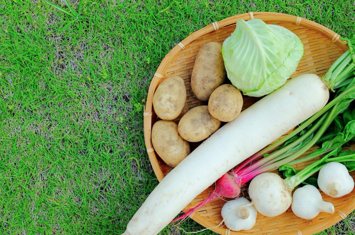 便秘解消の野菜